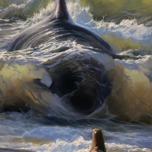 orca print artwork
